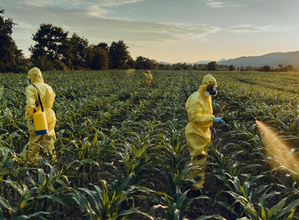 agrotoxicos-liberados-governo-4112511jpg